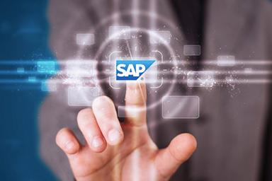 SAP Basis Hizmetleri