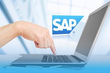 SAP TRM Nedir?